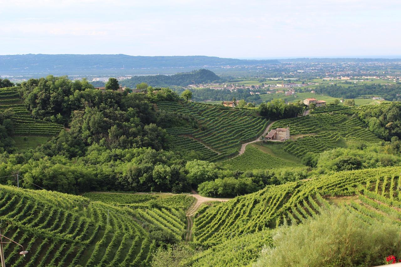 Colline del Prosecco, Veneto