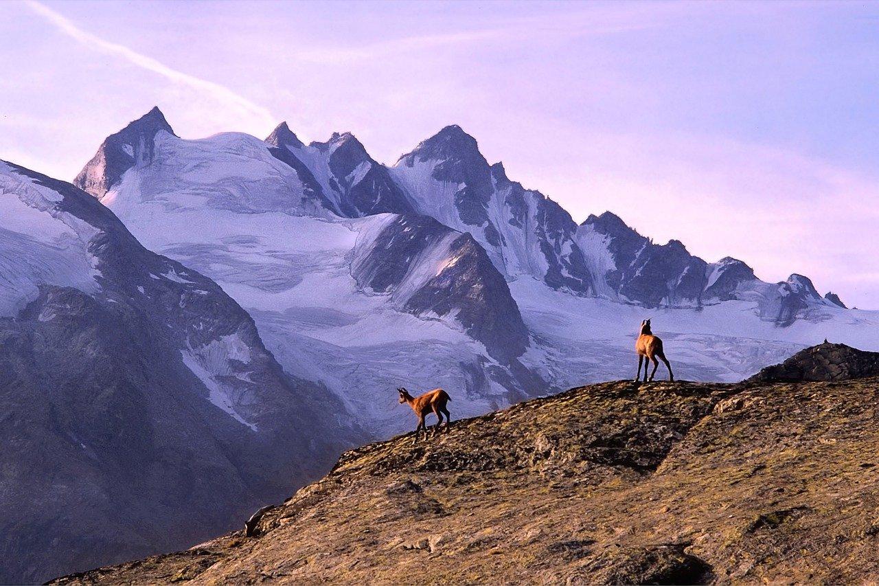 Alpi, Valle d'aosta